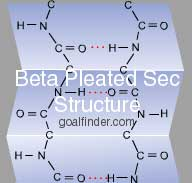 Beta Plated secondary structure