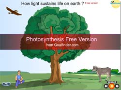 light sustains life on earth